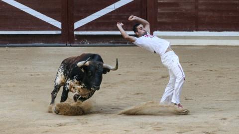 Concurso de recortes, Vitoria-Gasteiz, Spain