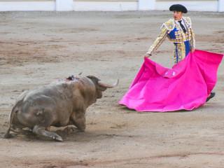 Gijon, Spain6