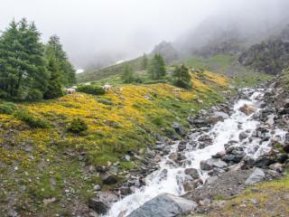 Tyrol, Italy 10