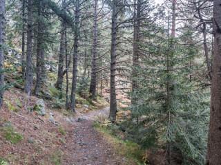 Camino al Arinsal, Parque de Comapedrosa, Andorra