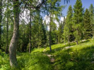 Planina Visevnik, Fuzinarske planine, Slovenia1