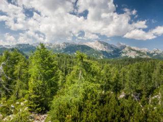 Triglav, Fuzinarske planine, Slovenia3