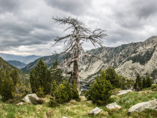 Collada des Feixetes, Parque Nacional de Aigüestortes, Spain1