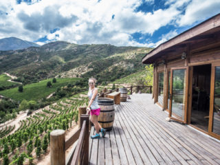 Viña Ventisquero, Valley Colchagua, Santa Cruz, Chile 2
