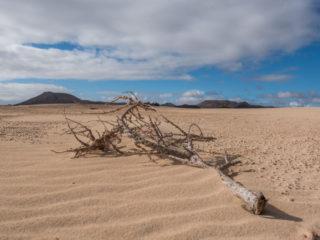 Dunas de Corralejo, Fuerteventura, Spain7