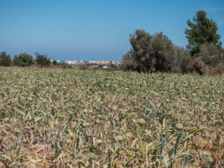 Peníscola, España 1
