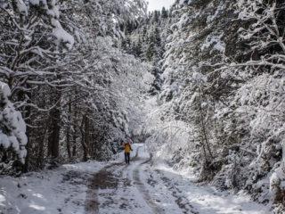 Camino a Francoli, Andorra 1