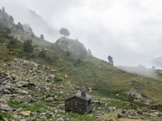 Camino Angonella, Andorra 10