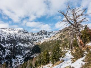 Vall del Riu, Andorra6